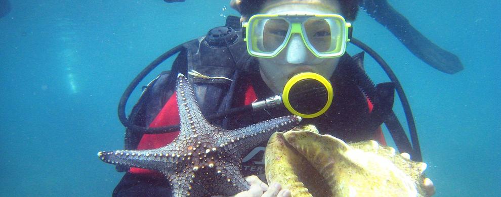赏缤纷海底世界