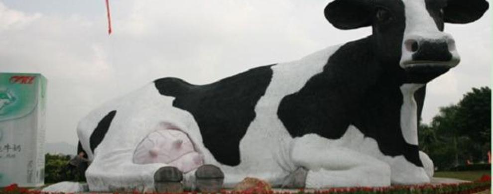 晨光奶牛示范场