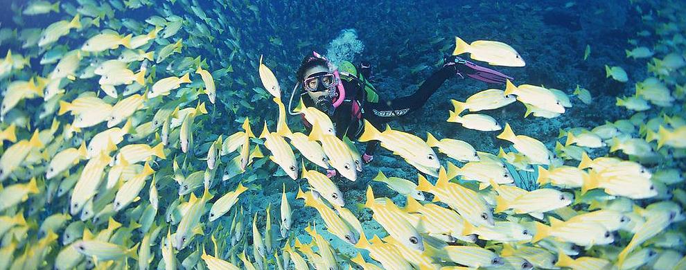 畅享神秘海底