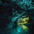 蒂阿瑙萤火虫洞
