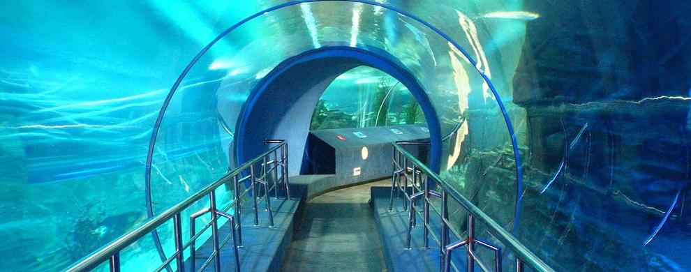 漫游海底隧道