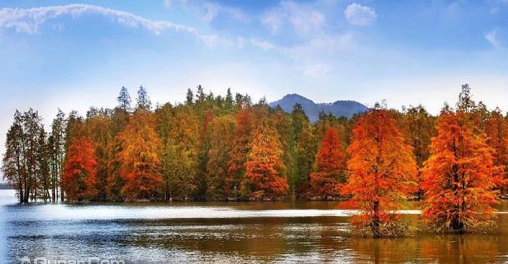 包含景点: 青山湖国家森林公园 去哪儿价                  暂无