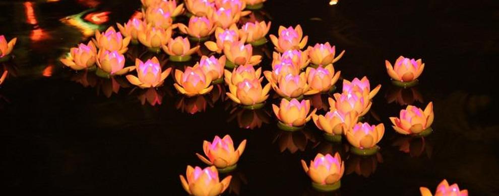 河灯花的制作图片