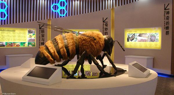 中国蜜蜂博物馆