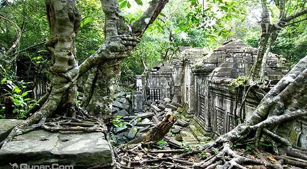 柬埔寨一日游租车