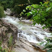 上坝河国家森林公园