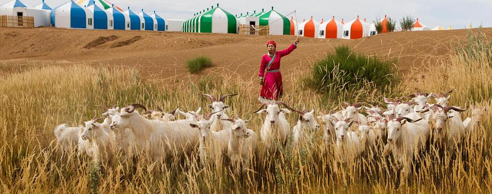 蒙古族生活