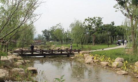 苏州门票 大阳山植物园