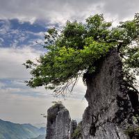 华蓥山旅游区