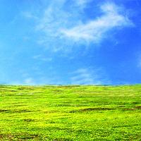 龙里大草原