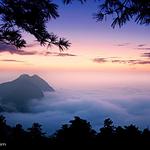 山阳天竺山国家森林公园