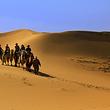 大漠风情园
