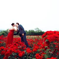 木兰玫瑰园