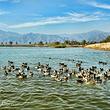 北京野鸭湖国家湿地公园