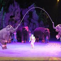 长隆国际大马戏剧院