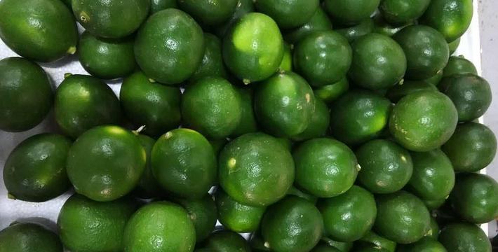 海南热带水果图片