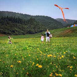 武隆仙女山国家森林公园