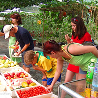 集发生态农业观光园