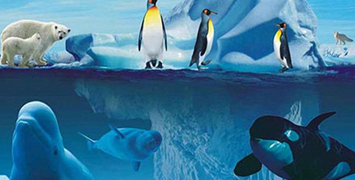 壁纸 海报 海底 海底世界 海洋馆 水族馆 710_360