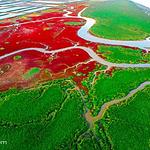 辽河口红海滩旅游区