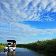 乌裕尔河湿地公园