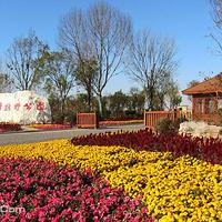 西青郊野公园