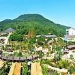 三江森林温泉