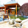 汉拿山汤泉国际酒店温泉成人票