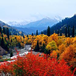 新疆库尔德宁旅游风景区