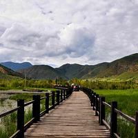 草海走婚桥