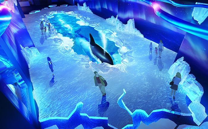 0只极地海洋动物