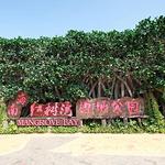 富力红树湾湿地公园