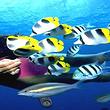 太平洋海底世界成人票