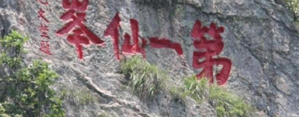 中华文化之奇胜