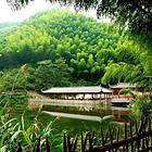 中南百草原景区