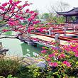 北京园博园成人票