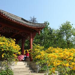 丹景山旅游景区
