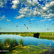 绕阳湖水利风景区