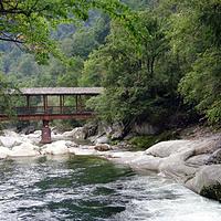坡陇原始森林景区