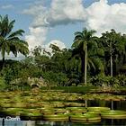乌鲁淡布伦国家公园