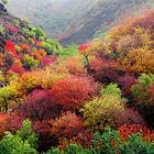 中华福寿山