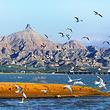乌海湖旅游景区