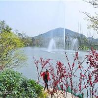 阳山桃花岛景观公园