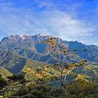 沙巴神山公园