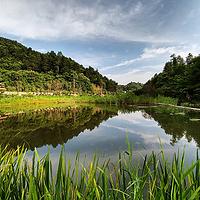 陕西秦岭悠然山高山湿地景区