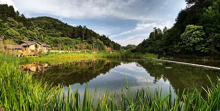 陕西秦岭悠然山高山湿地景区图片