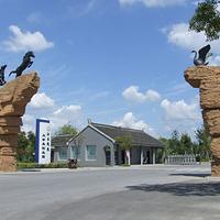 泰州凤城河田园牧歌景区