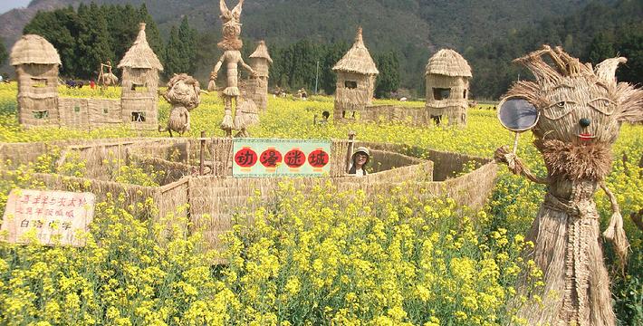 东莞百香岛生态农业旅游区