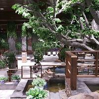 延边王朝圣地温泉(长白山镇温泉店)