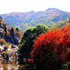 红叶谷生态文化旅游区